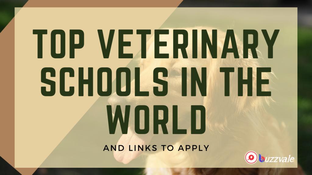 top veterinary schools in the world 2