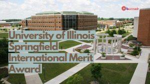 uis merit scholarship award for international students