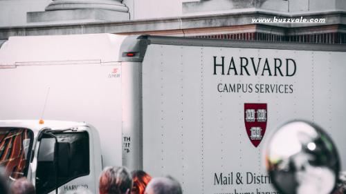 harvard college and university