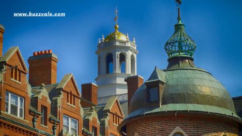 harvard university for international students